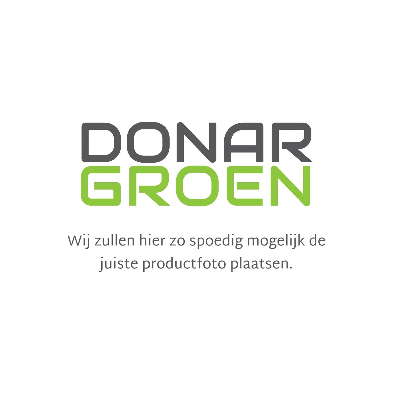 DONAR Benzinejerrycan kunststof 6 en 3 liter transparant.